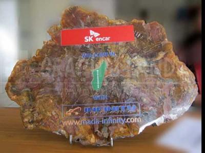 impression sur pierre (bois silicifié)
